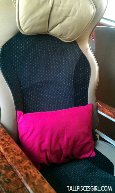 Comfy seat with mini pillow