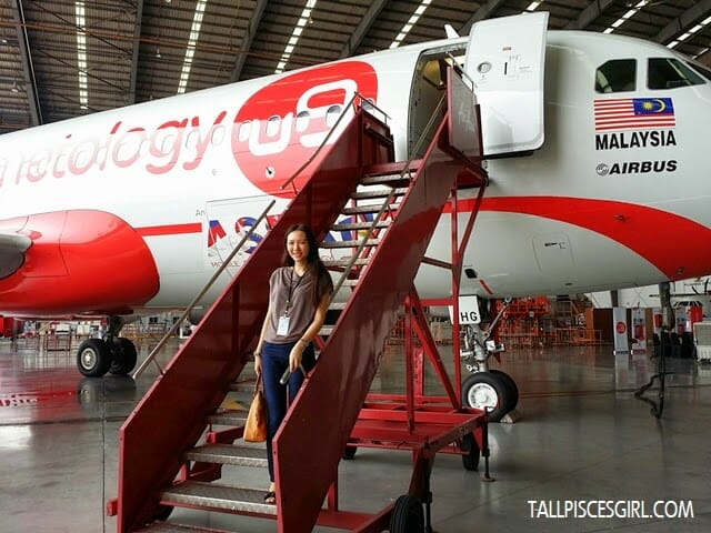 Ninetology's Aircraft Livery Plane!